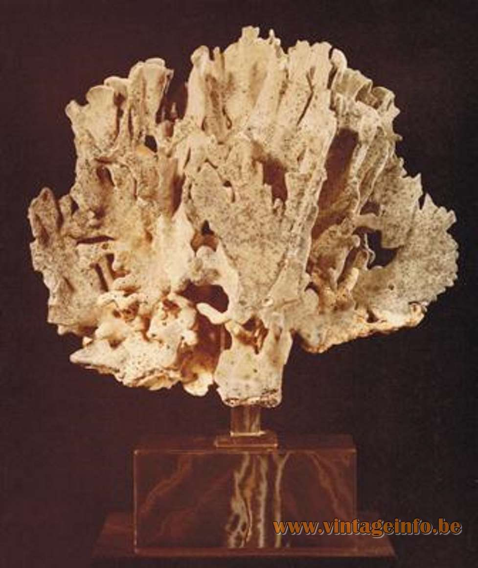Willy Daro Coral Lamp