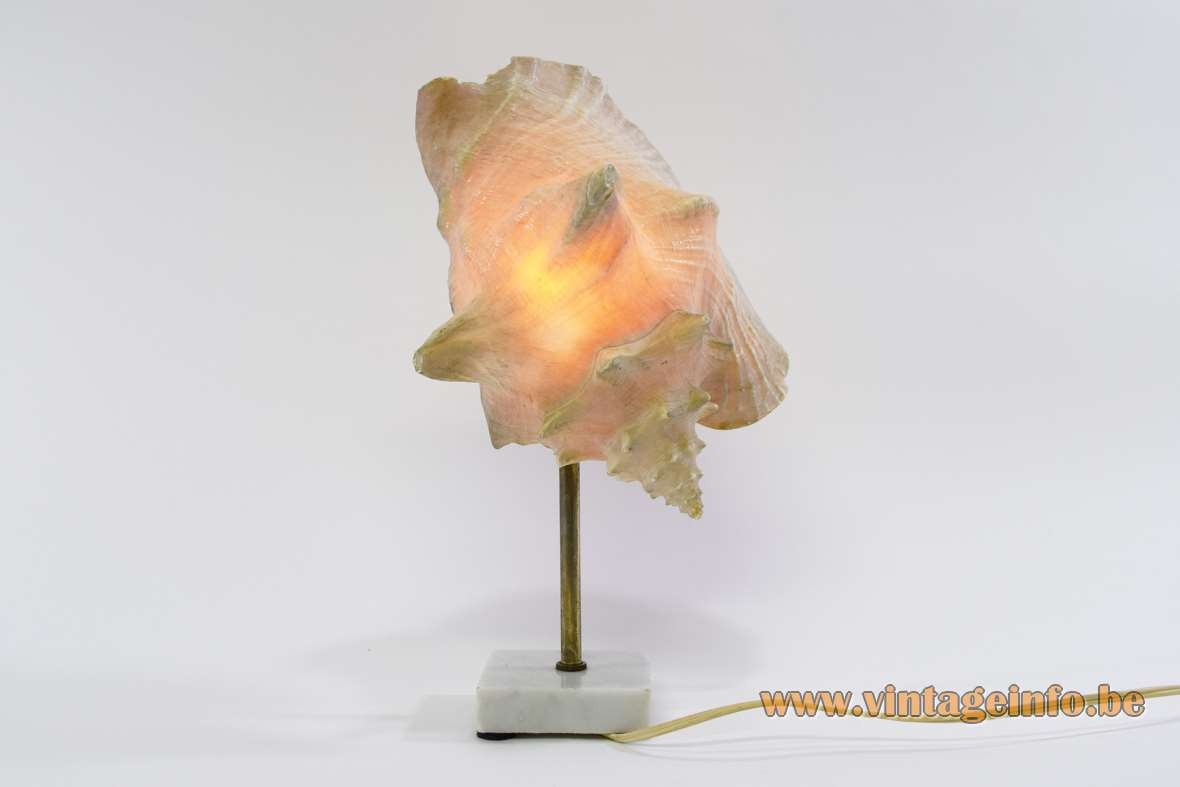 Queen Conch Table Lamp