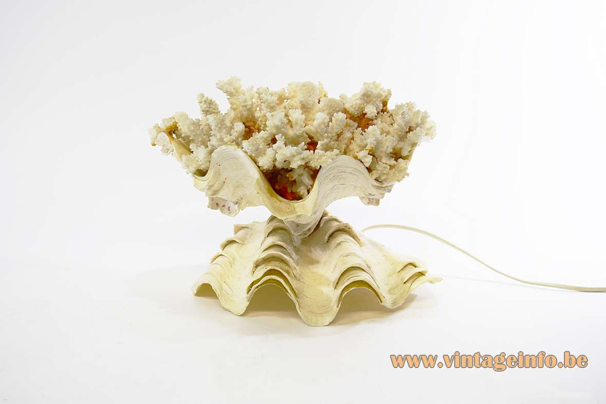 Giant Clam Table Lamp Sea souvenir tridacna gigas togheter with cauliflower coral E14 socket