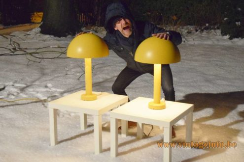 Eric with 2 BEGA garden lamps in the snow
