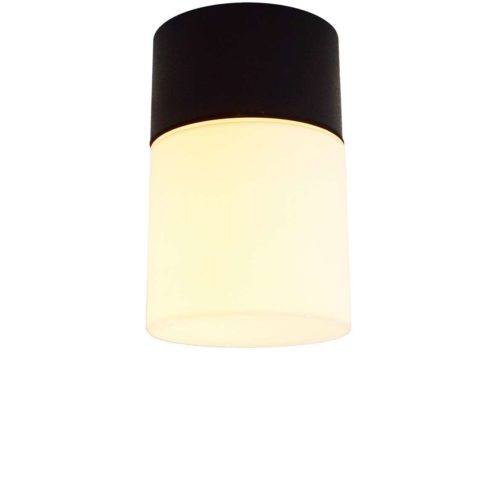 Bega outdoor flush mount or wall lamp 4865 round black base opal glass lampshade 1970s 1980s